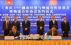 Viet Nam rolls out red carpet for Chinese investors: Ambassador