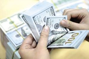 Financial experts urge caution against dollar loans