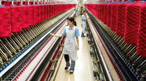 Da Lat to launch $50-m sheep wool yarn spinning plant