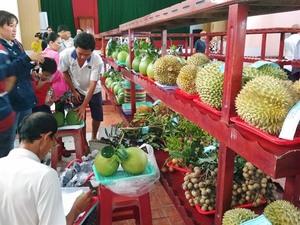Ben Tre brands unique local fruits