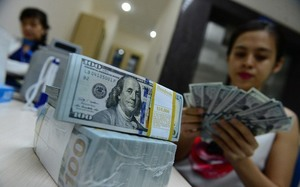 Dollar hike won't significantly affect VN's economy