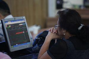 VN stocks gain on banks, energy firms