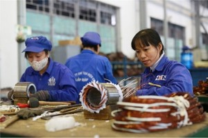 Over 12,000 new firms established in Ha Noi