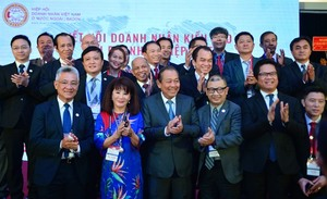 Overseas Vietnamese businesses contribute to development, says deputy PM