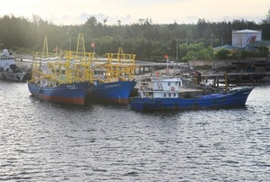 Viet Nam signs up to international fishing legislation