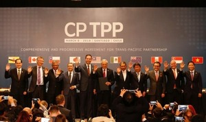 MoIT will submit CPTPP for approval by year-end