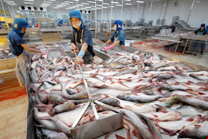 Catfish exporters need to diversify