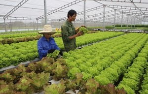 Human resource training key to agriculture 4.0
