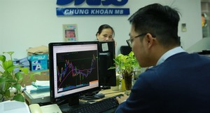 VN stocks gain on divestment plans