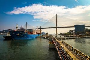Petrolimex asks for divestment extension