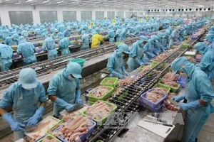 Safety key for food exporters: conference