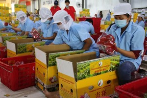 Farm produce exports to China face higher quality standards