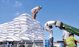 Viet Nam to auction sugar import quotas for 94,000 tonnes