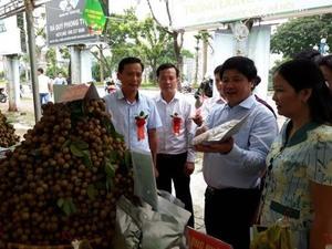 Son La longan week opens in Ha Noi