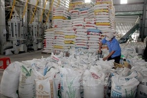 An Giang Province exports rise by 7 per cent