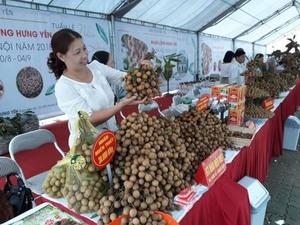 Hung Yen longan week opens in Ha Noi