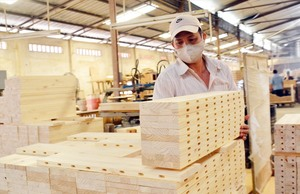 PM to chair meeting on wood exports