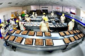 VinaCapital decides to stop investing in safe egg manufacturer Ba Huan