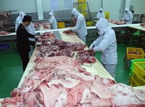 Pork price gains record high