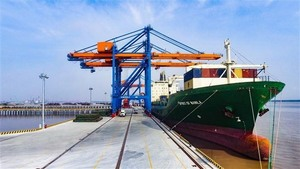 Seaports at Dung Quat EZ need to reach regional standards