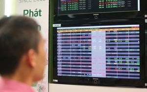VN stocks barely end positive