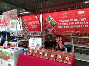 Son La strawberry and farm produce 2019 launched in Big C Ha Noi
