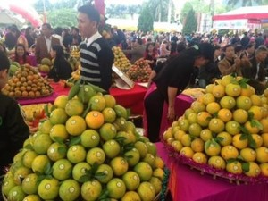 Viet Nam protects 75 domestic and foreign products​