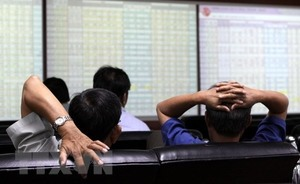 VN stocks saved by rally in oil prices