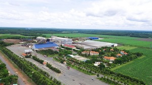 Sugar firm remains in VN30 Index