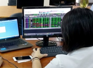 Shares mixed as Tet lull begins