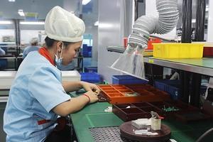 Dong Nai achieves record FDI disbursement rate