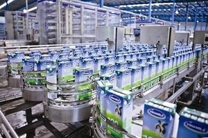 Vietnam Report names prestigious brands in 2019