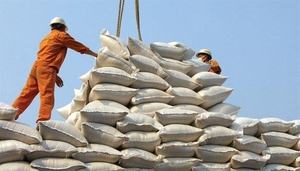 Viet Nam should improve rice quality in long-term strategy