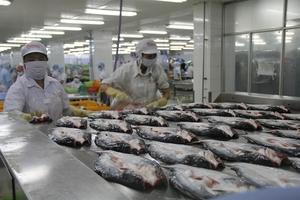 Viet Nam hopes for more economic cooperation with UAE