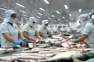 DOC announces review on anti-dumping dutieson tra fish from Viet Nam