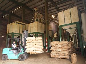 Dak Lak firms recognised for export activities