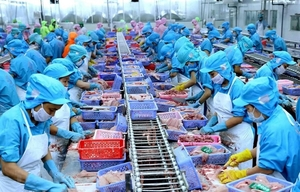 Seafood firms' profits drag on weak exports