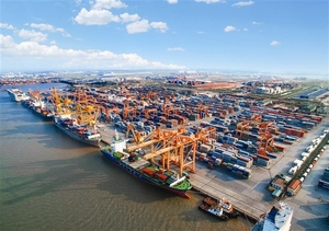 Two international container terminals to be built in Hai Phong