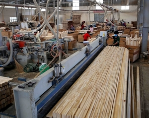 Temporary suspension of import and re-export of plywood to the US