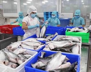 Viet Nam enjoys record trade value