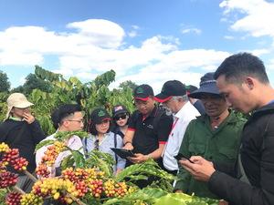 Global NESCAFÉ Plan initiative contributes to sustainability of Vietnamese coffee farming