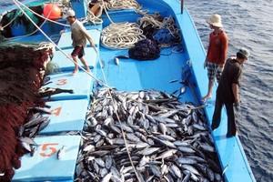 EC recognises Viet Nam's improvements in combating IUU fishing
