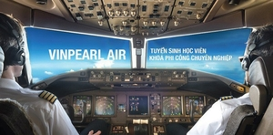 Vinpearl Air may take off next year