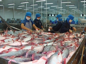 Seafood firm Vinh Hoan to pay dividend in shares