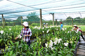 City to invest in agriculture products