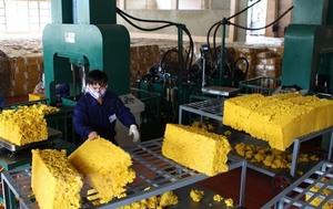 Rubber industry enjoys good start in 2019