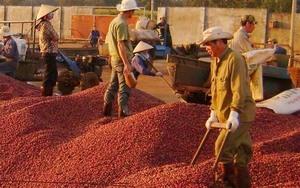 Vietnam-Czech Republic trade ties improving
