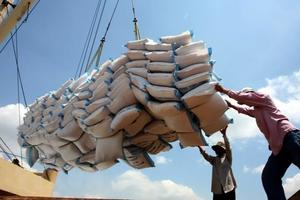 Rice exporters face a tough year
