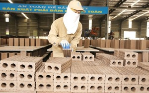 Non-fired bricks to be promoted