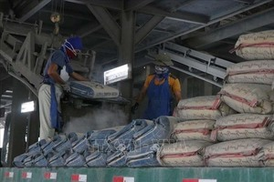 Cement, clinker demand to edge up this year